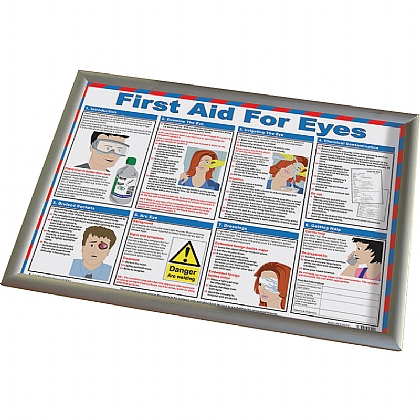 First Aid For Eyes Poster (With Frame)