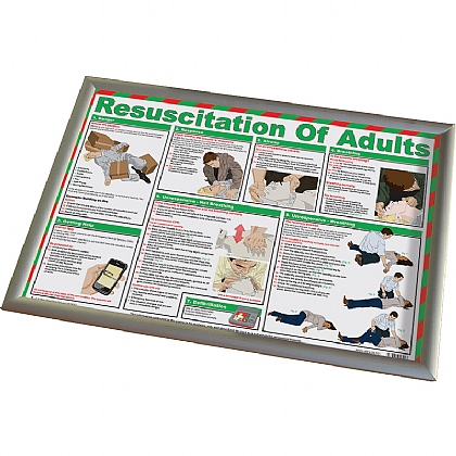 Resuscitation of Adults Poster (With Frame)