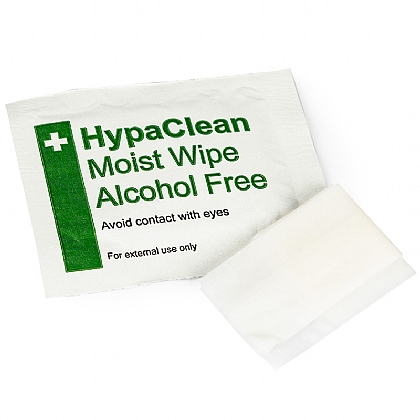 HypaClean Moist Wipes, Alcohol Free (Pack of 10)