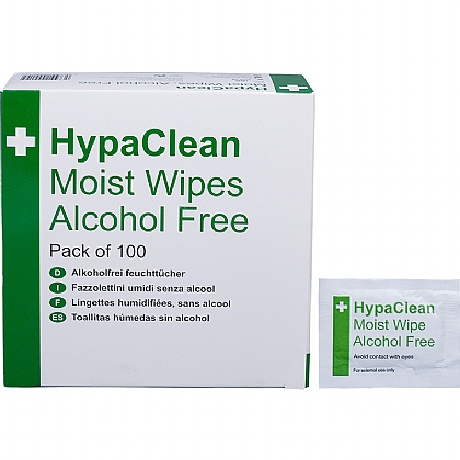 HypaClean Moist Wipes, Alcohol Free (10 packs of 100)
