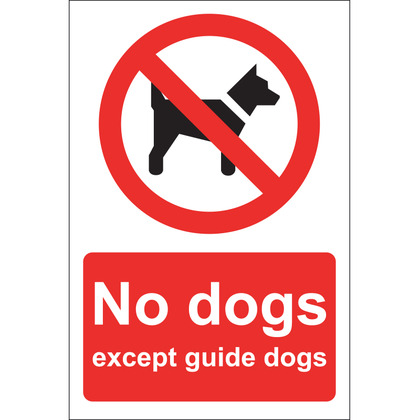No Dogs Except Guide Dogs Sign, Rigid, 20x30cm